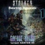 Ночкин Виктор - S.T.A.L.K.E.R. Слепое пятно  (2014) MP3