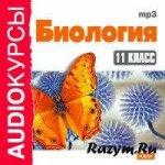 Н. В. Гаврилов, О. А. Масычев - Биология. Аудиокурс (11 класс)  МР3