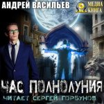 Андрей Васильев - Час полнолуния (2019) MP3