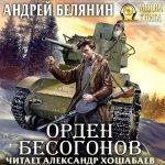 Андрей Белянин - Орден бесогонов (2019) МР3